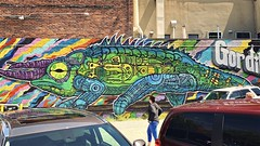 chameleon on a wall...