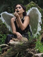 Fallen Angel.Alice1