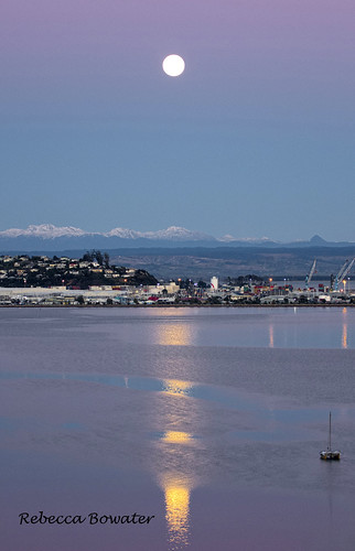 Full Moon Reflections in the Haven early Morning