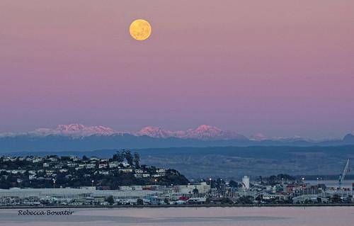 Full Moon Setting early Morning at Sunrise