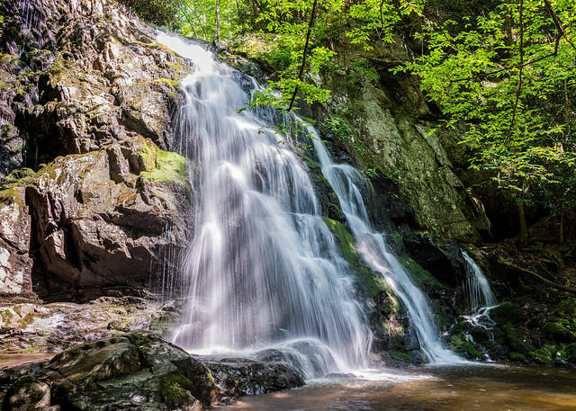 Spruce Flats Falls, Great Smoky Mountains NP