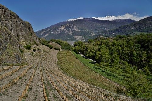 Sion - château de Tourbillon 3