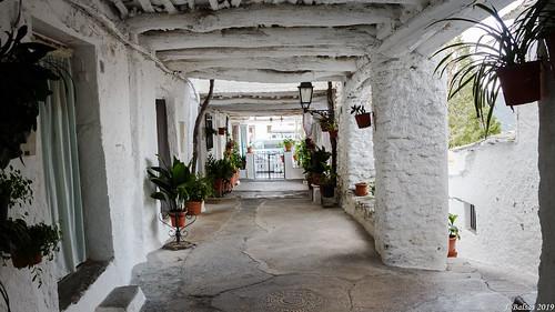 [0453] Capileira, Alpujarra Granadina