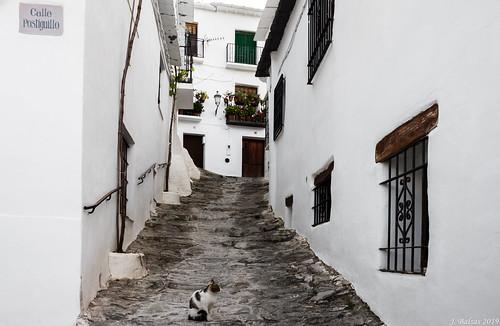 [0454] Capileira, Alpujarra Granadina.