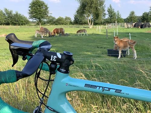73km at 30km/h through Drenthe