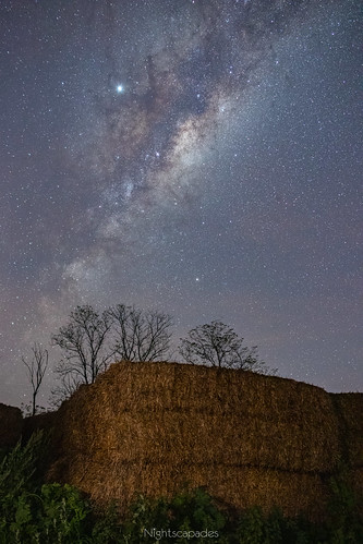 Make hay while the Milky Way shines