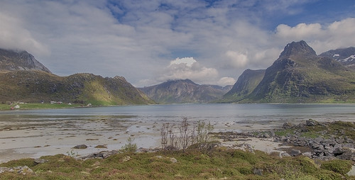 Low tide on the fjord