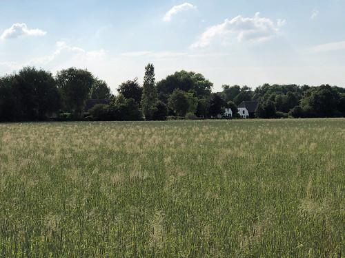 Farm nearby Langenboom, North Brabant