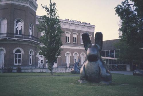 Big bunnies. (35mm)   Exp. Fujichrome Sensia 400.