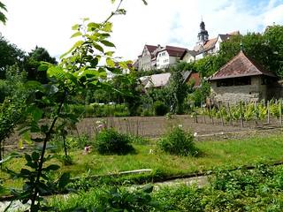 Gochsheim3