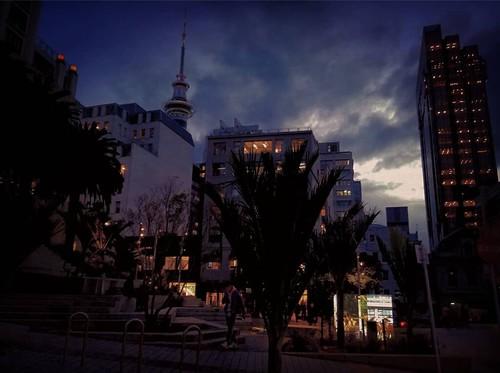 auckland city nights