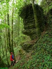 Monolithe 1 dans une forêt de Salins - Jura  (inédit)
