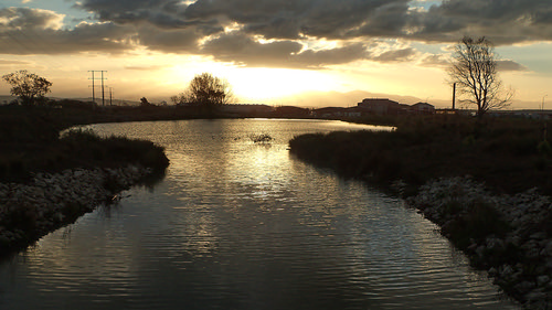 Dusky pond