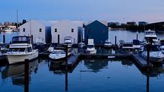 Boathouse Blues