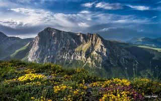 Sibillini National Park  - monte Bove
