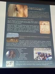 Conférence parcours Léonard de Vinci: de Vinci à Amboise en roulotte (« Le sabot et la plume ») par Clémence de Villecourt