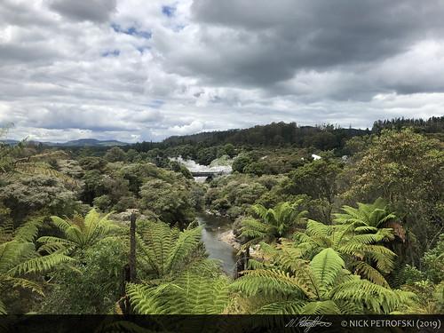 Bay of Plenty, New Zealand (29-November-2018) 15