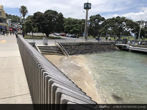 Bay of Plenty, New Zealand (29-November-2018) 9