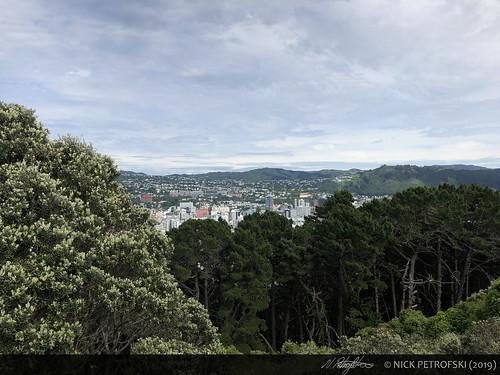 Wellington, New Zealand (1-December-2018) 4