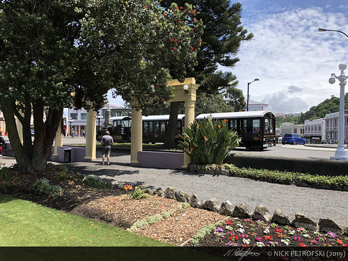 Napier, New Zealand (30-November-2018) 5