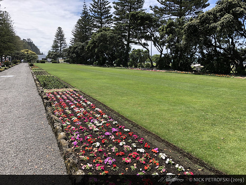 Napier, New Zealand (30-November-2018) 1
