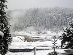 Snowstorm in Yellowstone (8 June 2019) 5