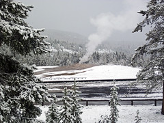 Snowstorm in Yellowstone (8 June 2019) 8