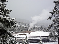 Snowstorm in Yellowstone (8 June 2019) 7