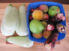 Summer Produce From Our Garden – Red Moon Sanctuary, Redmond, Western Australia
