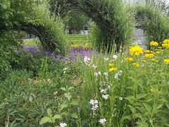 Jardins du Colysée