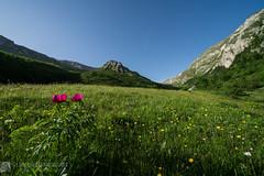 MONTE SIBILLA per casale Pantanelli e Vallelunga (Monti Sibillini)