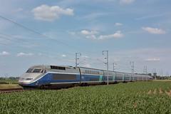 TGV Réseau-Duplex N°606 / Staple