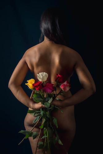 Mélusine roses 5