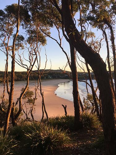 Merry Beach Dawn