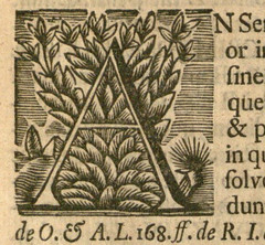 Germany 46 F1816, A initial