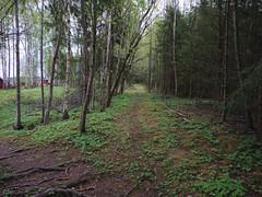 Umerkert snarvei, Langnes, Askim, Indre Østfold, Viken, Norway