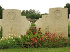 Ranville War Cemetery. - Photo of Escoville