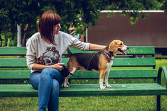 Young woman with cute beagle dog on the bench