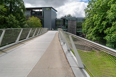 THIS IS KNOWN AS THE LIVING BRIDGE [ LIMERICK UNIVERSITY CAMPUS]-153237