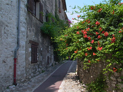 Rue de l'Allée - Photo of Villeneuve-Loubet