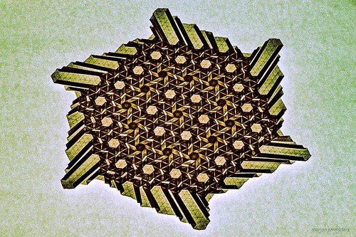 Extended Star-Flower (backlit)  (Marjan Smeijsters)