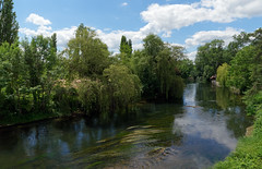 Loing river - Photo of Thomery