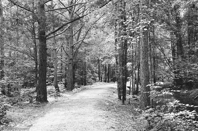 Piney river rail trail