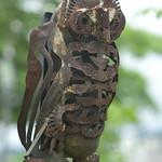 Machine owl