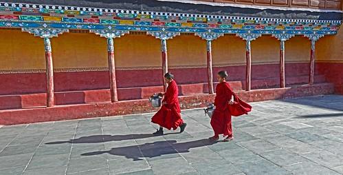 Young Monks Bring the Tea DSC_4193