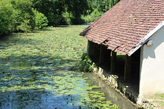 Ancien lavoir - Photo of Orville
