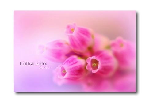 25/52. I believe in pink . . .