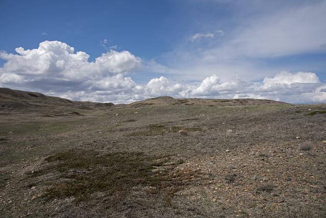 Broken Hills Trail, Grasslands - DSC_3672a