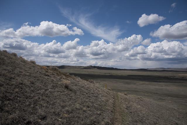 Broken Hills Trail, Grasslands - DSC_3744a