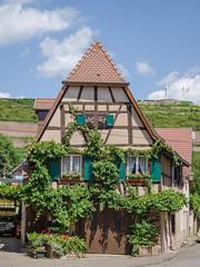 Belle maison végétalisée - Photo of Bœrsch